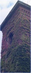 Vines Climbing a Tower in Westford